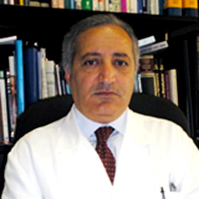Antonio Lanzone